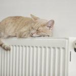 Kako se boste ogrevali? Z radiatorji ali s talnim gretjem?